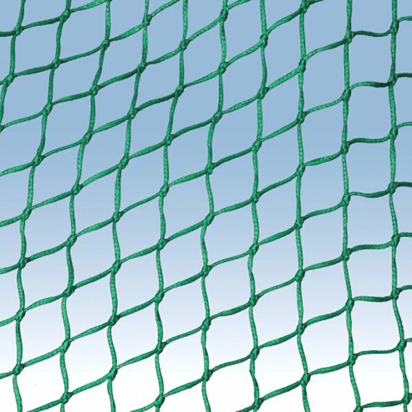 safety net Featured Image